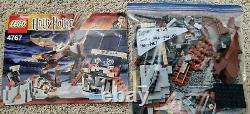 LEGO Harry Potter 4767 Harry and the Hungarian Horntail Complete (no box)