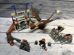 Lego 4767 Harry Potter Harry & The Hungarian Horntail 100% Complet! Pas De Manuel